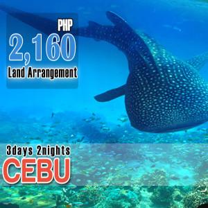 CEBU-300x300